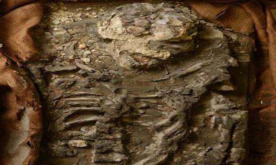 El esqueleto de 6.500 años que le ganó al diluvio