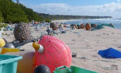 ¿Sabías que la Isla Henderson es uno de los lugares más contaminados del mundo?