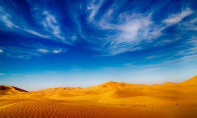 ¿Sabías que el desierto árabe era una selva?