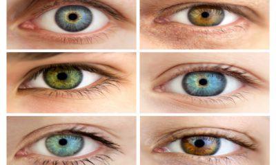 ¿Sabías que nuestros ojos tienen muchas curiosidades?
