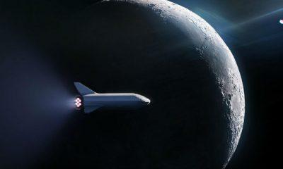 SpaceX ficha su primer turista lunar-