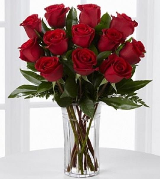 ¿Sabías que las rosas rojas no existían originalmente