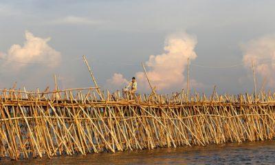 Puente más largo de bambú
