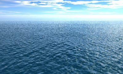 ¿Sabías que el océano limpia nuestro desorden?