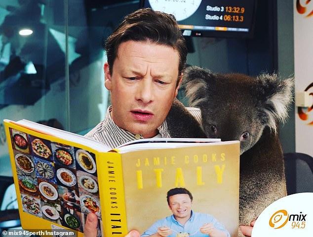 ¿Sabías que un chef famoso abrazó a un koala?
