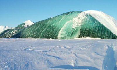 ¿Sabías que hay icebergs verdes en la Antártida?