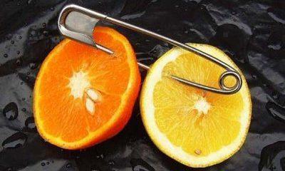 ¿Sabías que la expresión media naranja viene de Grecia?