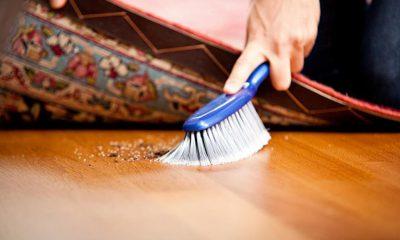 ¿Sabías que el polvo doméstico tiene piel muerta?