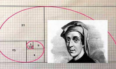 ¿Sabías que la sucesión de Fibonacci está en la naturaleza?